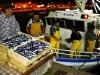 mercato-ittico-filiera-corta